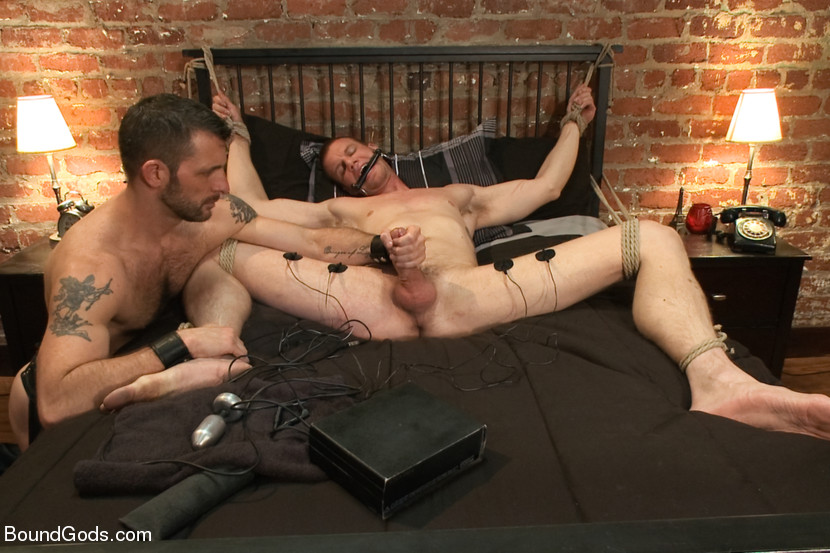 Nyc gay xxx dvd rental membership