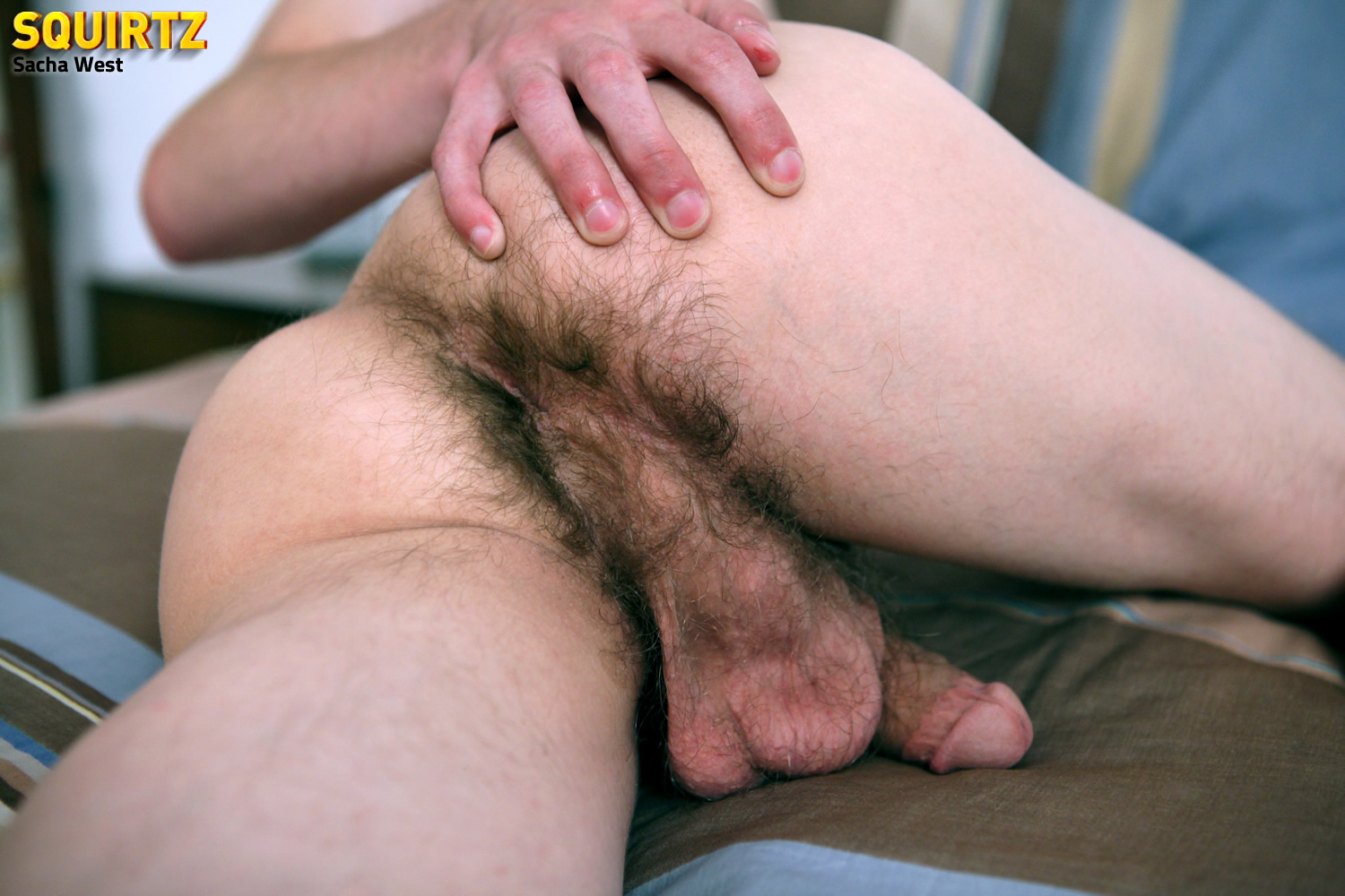gay hairy butthole